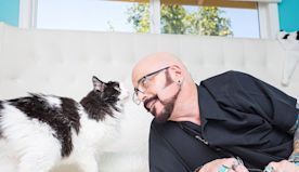 'My Cat From Hell' and Jackson Galaxy Are Back to Help Freaked Out Felines Weather Quarantine