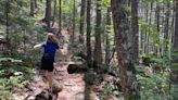 Niagara Falls is one of Baxter State Park's best family-friendly hikes