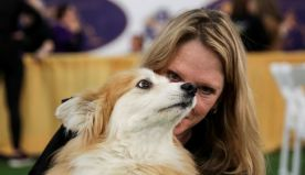 Isle of Dogs: Westminster Kennel Club show opens in New York