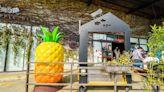 [嘉義] 旺萊山鳳梨文化園區 / 免門票 / 免費試吃鳳梨酥和醋飲 - SayDigi | 點子生活