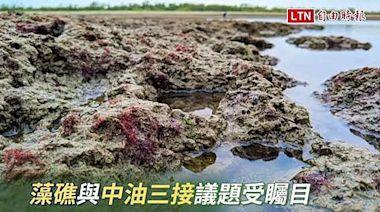 藻礁議題無共識 潘忠政沉重嘆:小英是局外人