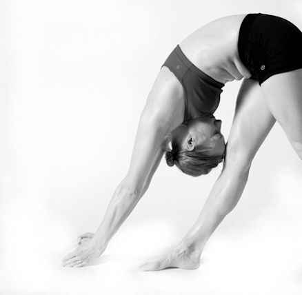 bikram-yoga-hilton-head-hilton-head-island- - Yahoo Local ...