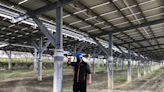 雲林麥寮天機太陽能電廠 太陽能板採高架避淹水 (圖)