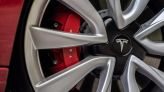 Now lizards are delaying Tesla's German factory construction, report says