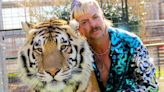 A Follow-Up 'Tiger King' Episode Focused on the Siegfried & Roy Attack Is Coming