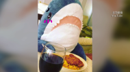 IKEA「鯊魚抱枕」驚傳停賣! 網友發起「拯救鯊魚」連署