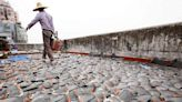 鯊魚悲歌》新冠疫情幾乎拖垮全球經濟 魚翅貿易為何絲毫不受影響?