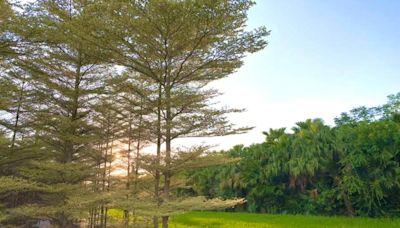 在田尾小鎮被綠意圍繞,享用美食也被自然療癒,處處蘊藏在地人的用心 - 戚戚的旅行小筆記 - 微笑台灣 - 用深度旅遊體驗鄉鎮魅力