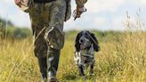 How to pick rubber boots for hunting