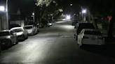 16-Year-Old Shot While Walking Dog in South Austin