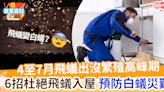 【防飛蟻】4至7月飛蟻出沒高峰期 6招杜絕飛蟻入屋繁殖預防白蟻災難 | MamiDaily 親子日常