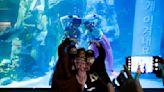 Divers in 'Hanbok' send New Year greetings from underwater at South Korean aquarium