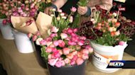 Eastward Gardens offering home delivery flowers during pandemic