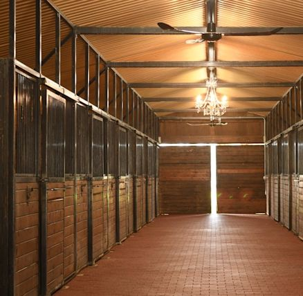 Sls long loop earnetsugars legacy stables rancho santa fe