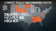 States with lowest vax rates have COVID death rates 4 times higher