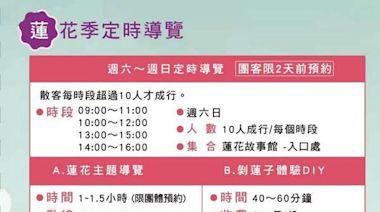 還有一個月花期!桃園蓮花季8/7開幕 賞蓮+坐大王蓮+蓮花餐