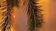Forest Fires Fill Southern Turkey Sky With Smoke