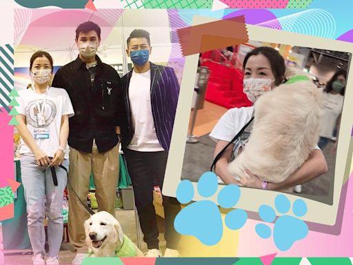 做寵物義工遇上陳展鵬 譚嘉荃呼籲支持領養不棄養