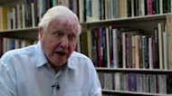 Attenborough: 'The moment of crisis has come'
