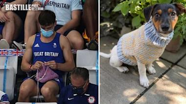 東奧奪金後觀眾席上「織冷衫」成熱話 英跳水名將:為愛犬而織 | Plastic