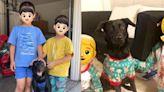 彰化黑狗飛美國「迷暈鄰居小孩」 帥到被指定認養:要找跟牠一樣