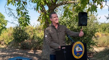 Thousands watch hearing over Newsom powers + Machete speaks + Dirty tricks campaign?