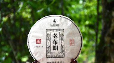 這款茶,除了苦和甜,還有一個故事丨品鑑「老布朗」