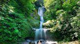森呼吸微解封 這5個雙北瀑布美得好仙境