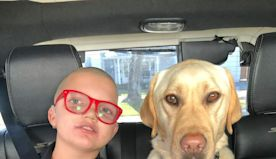 Local Siblings Raise Over $10k for Canine Companions for Independence | NewsRadio KFBK | The Afternoon News with Kitty O'Neal