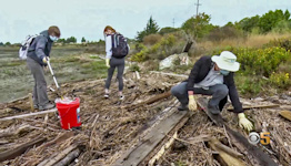 Volunteers Spread Out Across Bay Area for Annual Coastal Cleanup