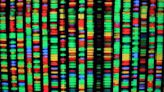 Best DNA test in 2020: 23andMe vs. AncestryDNA and more