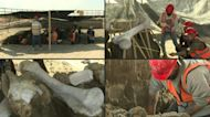 Mammoth bones discovered at Mexico City airport construction site