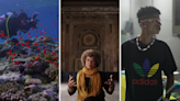 10 documentaries to watch on Netflix if you want to learn something new