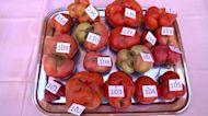 Dozens compete in Spain's 'ugliest tomato' contest