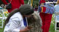 狗界奧斯卡 北京犬「哇沙比」第145屆「西敏犬展」奪冠