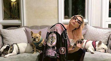 Lady Gaga愛犬遭持槍匪綁架 曾為拜登就職唱國歌 FBI調查是否涉政治動機 - 20210227 - SHOWBIZ - 明報OL網