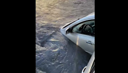 Driver Rescued As Car 'Swallowed' by Clearwater Hole