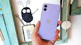 iPhone 12 紫色款開箱!顏色變深、質感更勝 iPhone 11, 同場加映原廠 MagSafe 與 UAG 手機殼   蕃新聞