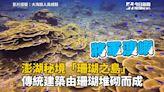 影/珊瑚覆蓋率高達98%!全台「最秘境島嶼」就在這