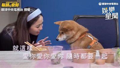 陳芳語為這事「開始吃素」 曝《愛你》原版超悲哀