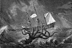 Cephalopod attack