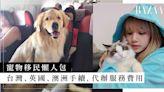寵物移民懶人包:代辦服務公司邊間好?台灣、英國、澳洲手續價錢、私人飛機費用 | HARPER'S BAZAAR HK