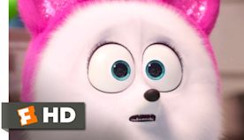 The Secret Life of Pets 2 - Cat Lessons | Fandango Family
