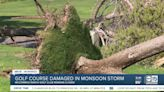 Valley golf course loses hundreds of trees in monsoon storm