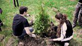 種樹就能救地球?科學家獻上植樹黃金 9 大守則:走錯「這步」將利大於弊