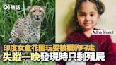 印度4歲女童家中花園玩耍 野豹翻牆闖入叼走 森林尋獲僅剩殘屍