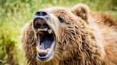 Could This Simple Strategy Save You From the Next Bear Market?