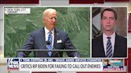 Sen. Cotton torches Biden's UN speech: World sees him and 'laughs'