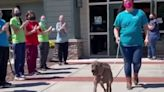 入收容所260天成「最久住戶」 虎斑犬終被領養...鼓掌道別歡送牠