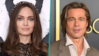 Angelina Jolie Sued By Brad Pitt For Attempting To Sell Her Shares Of Their Winery (Reports)